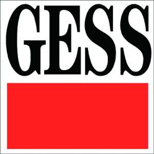 Gründung von GESS Software